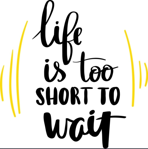 life-is-too-short-to-wait-lettering-phrase-vector-17321008